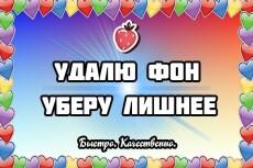 Сделаю качественную обводку со всеми деталями 4 - kwork.ru