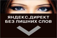 Настрою РК в Яндекс Директ 22 - kwork.ru