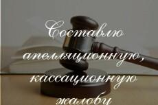Подготовлю апелляционную, кассационную жалобу 17 - kwork.ru