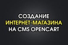 Создание интернет-магазина на OpenCart, с наполнением 29 - kwork.ru