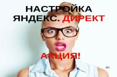 Рекламная кампания в РСЯ Яндекс. Директ на 50 ключей + ведение 30 дней 6 - kwork.ru