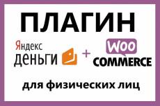 Подключу системы оплаты к Woocommerce 23 - kwork.ru