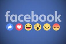 Подписчики в паблик Facebook с фильтрами. Не группа. Гарантия 18 - kwork.ru
