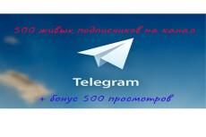 1000 русских подписчиков с просмотрами на telegram 7 - kwork.ru