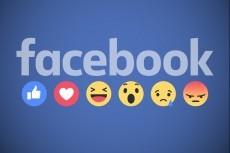 1000 новых участников в группу Facebook по критериям 18 - kwork.ru