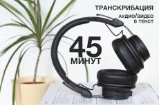 Расшифровка любых аудио- и видеозаписей в текст 16 - kwork.ru