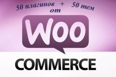 Премиум шаблоны wordpress интернет-магазинов 64 - kwork.ru