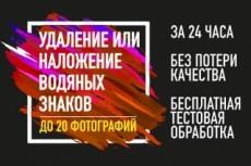 Удалить водяные знаки (watermark) с фото 16 - kwork.ru