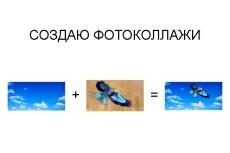 Фотоколлаж из картинок и фотографий 6 - kwork.ru