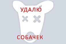 Аудит сайта и рекламной компании специалистом Яндекс директ 20 - kwork.ru