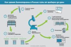 Инфографика 34 - kwork.ru