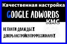 Создание и настройка рекламы под ключ на Поиск - Яндекс Директ 25 - kwork.ru