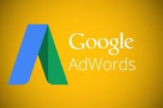 Настрою Google AdWords 1000 запросов на поиске 23 - kwork.ru
