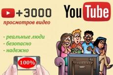 6000 просмотров видео на YouTube 11 - kwork.ru