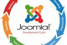 Перенесу сайт с Joomla на Wordpress 4 - kwork.ru