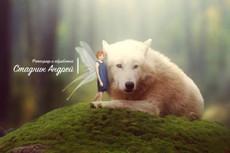 Сделаю полную профессиональную обработку фото. PhotoShop 6 - kwork.ru