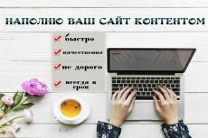 Контент для сайта юридической компании 42 - kwork.ru