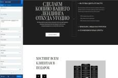 Скопирую landing page, одностраничный сайт, рабочие формы 218 - kwork.ru