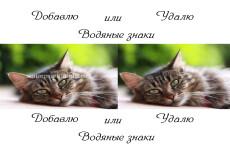 Сделаю фотомонтаж с вашей фотографией или логотипом 29 - kwork.ru