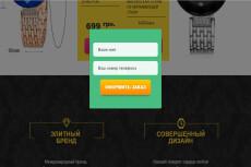 Настройка формы обратной связи Landing page 14 - kwork.ru