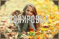 Сделаю из летней фото зимнюю в Adobe Photoshop 7 - kwork.ru