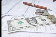 Проконсультирую по налоговому и бухгалтерскому учету, а также по программам 6 - kwork.ru