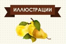 Сделаю макет этикетки 15 - kwork.ru
