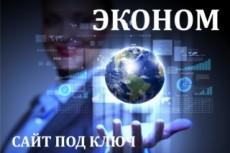 Профессиональная рекламная кампания в Яндекс Директ 29 - kwork.ru