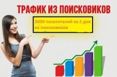 Посетители на сайт 1000 человек по ключевым запросам 5 - kwork.ru