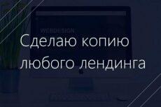 Сделаю полноценный сайт на Вордпрессе 29 - kwork.ru