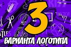 Дизайнер логотипов 39 - kwork.ru