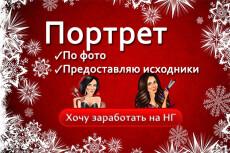 Шарж по фотографии 20 - kwork.ru