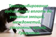 Расшифрую аудио/видео в текст на русском или английском 7 - kwork.ru