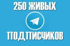600 подписчиков на канал Телеграм. Живые исполнители 12 - kwork.ru