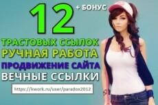 Размещу 12 ссылок на трастовых сайтах 14 - kwork.ru