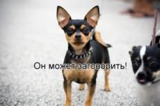 Сделаю видео поздравление от Лещенко 23 - kwork.ru