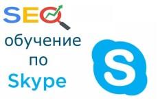 Онлайн консультация по Skype 5 - kwork.ru