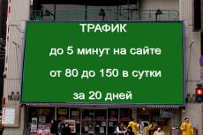 Трафик 14 - kwork.ru