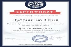 Реклама в Яндекс Директ 22 - kwork.ru
