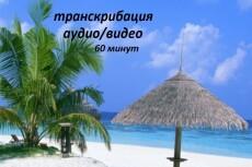 Переведу аудио, видео в текст 23 - kwork.ru