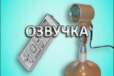 Озвучу видеоролик, рекламу, мультик, сериал, автоответчик 8 - kwork.ru