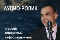 Изготовление аудиоролика 12 - kwork.ru