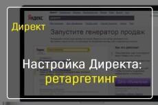 Качественная настройка Яндекс Директ 20 - kwork.ru