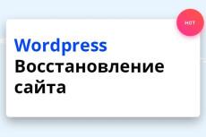 Перенос сайта на новый домен или хостинг 35 - kwork.ru