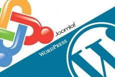 Решу проблему на сайте Wordpress, Joomla 14 - kwork.ru