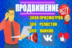 Продвину 2000 просмотров к вашей записи Вконтакте 12 - kwork.ru