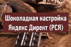 Качественно настрою Яндекс Директ под ключ. Поиск и РСЯ 21 - kwork.ru