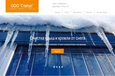 Готовый сайт Landing Page Услуги патронажа 33 - kwork.ru