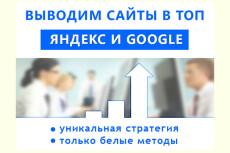 Поисковое продвижение 31 - kwork.ru
